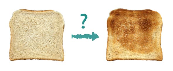 What makes my toast so toasty? The Maillard reaction!